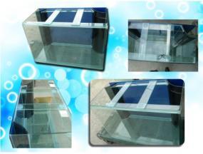 Aquarium Tank Malaysia 1000 Aquarium Ideas
